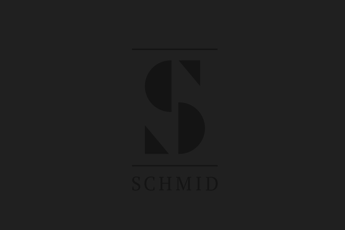 CASE_SCHMID_04